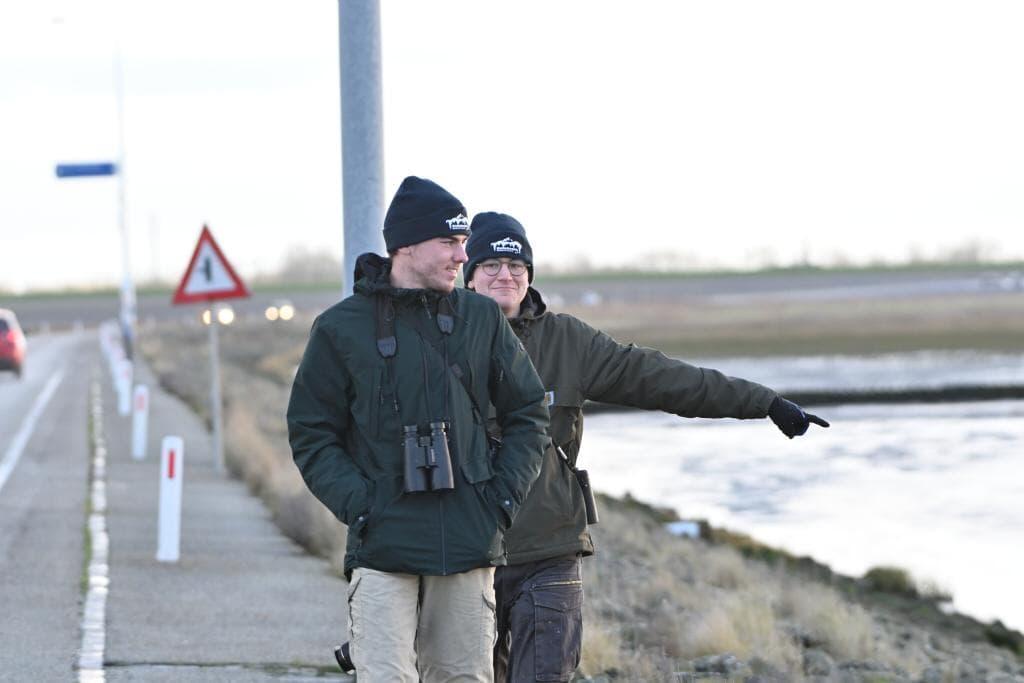 Uitwaaien in Friesland III: Wad een teleurstelling